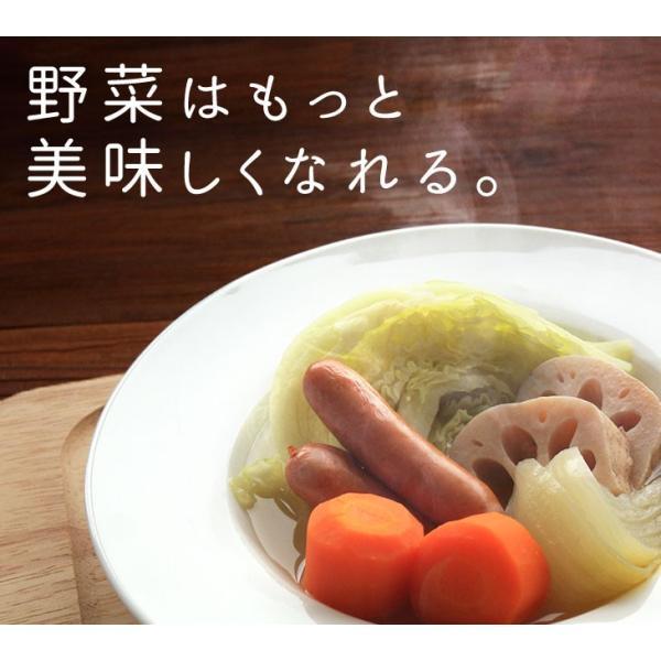 だし 出汁 野菜だし 野菜出汁 だしパック 野菜 国産野菜 九州野菜 味噌汁 鍋料理 パスタ 野菜出汁35g7g10パック|vegeko|20