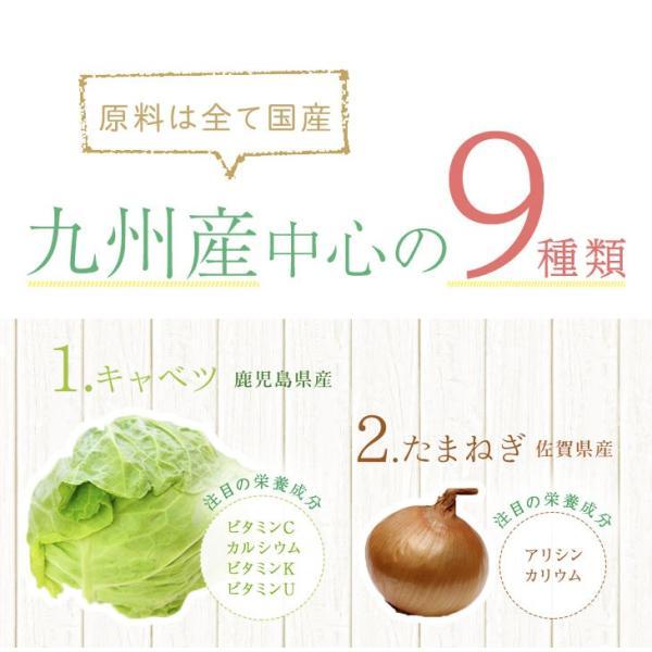 だし 出汁 野菜だし 野菜出汁 だしパック 野菜 国産野菜 九州野菜 味噌汁 鍋料理 パスタ 野菜出汁35g7g10パック|vegeko|06