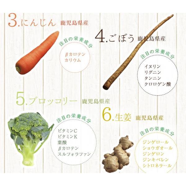 だし 出汁 野菜だし 野菜出汁 だしパック 野菜 国産野菜 九州野菜 味噌汁 鍋料理 パスタ 野菜出汁35g7g10パック|vegeko|07