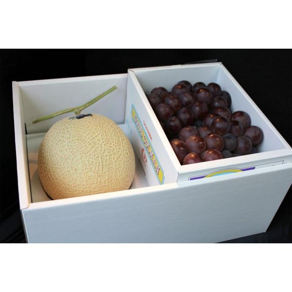 季節のおすすめ果物と最高級静岡メロンセット ロイヤルボックス仕様 葡萄 シャインマスカット・巨峰・ピオーネ・ゴルビー 化粧箱入みかんなど
