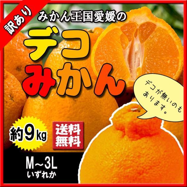 デコみかん 訳あり 不知火 しらぬい キズ多め デコポン 約9kg M〜3L 送料無料|vegetable-fruit-pro