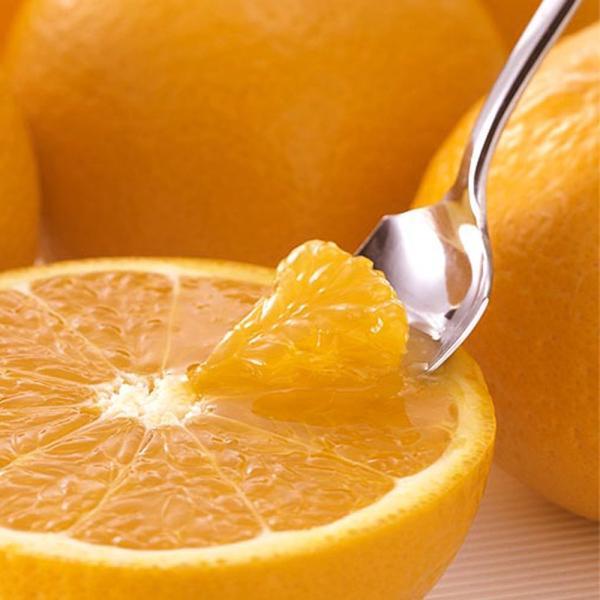 ジュース 贈答 清見タンゴールジュース みかんジュース 100% 750ml×3本 送料無料|vegetable-fruit-pro|04