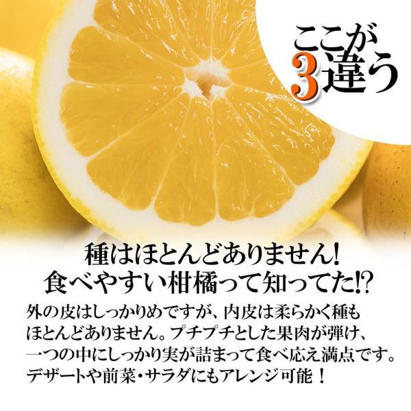 河内晩柑 訳あり 愛媛県産 和製グレープフルーツ ジューシーオレンジ M-3L 4kg 送料無料 セール|vegetable-fruit-pro|04