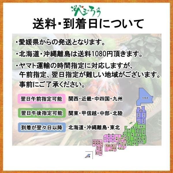 河内晩柑 訳あり 愛媛県産 和製グレープフルーツ ジューシーオレンジ M-3L 4kg 送料無料 セール|vegetable-fruit-pro|08