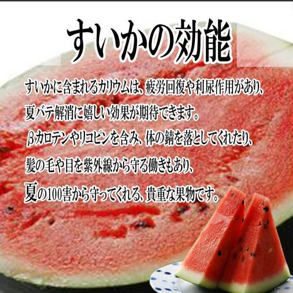 すいか 西瓜 愛媛県産 スイカ 送料無料 約8kg以上 超大玉 1玉 訳あり|vegetable-fruit-pro|03