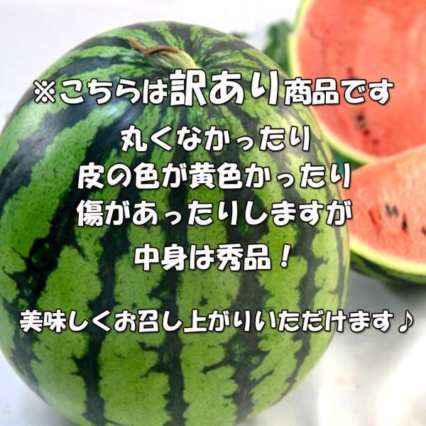 すいか 西瓜 愛媛県産 スイカ 送料無料 約8kg以上 超大玉 1玉 訳あり|vegetable-fruit-pro|04