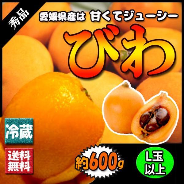 びわ 秀品 大粒 秀品 L以上 枇杷 600グラム 送料無料|vegetable-fruit-pro