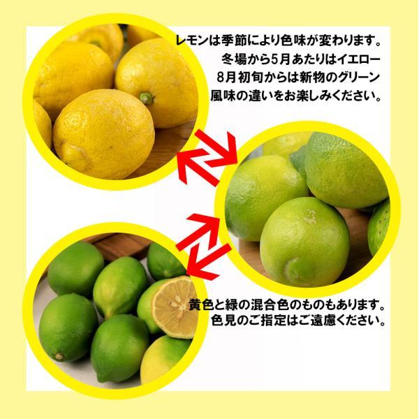 レモン 訳あり 愛媛県産 新物 檸檬 ノーワックス 防腐剤不使用 不揃い 2kg 送料無料 セール|vegetable-fruit-pro|02