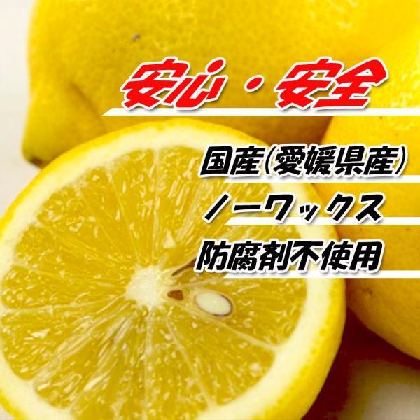 レモン 訳あり 愛媛県産 新物 檸檬 ノーワックス 防腐剤不使用 不揃い 2kg 送料無料 セール|vegetable-fruit-pro|03