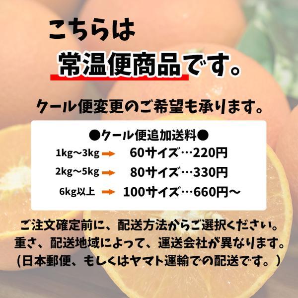 レモン 訳あり 愛媛県産 新物 檸檬 ノーワックス 防腐剤不使用 不揃い 2kg 送料無料 セール|vegetable-fruit-pro|05