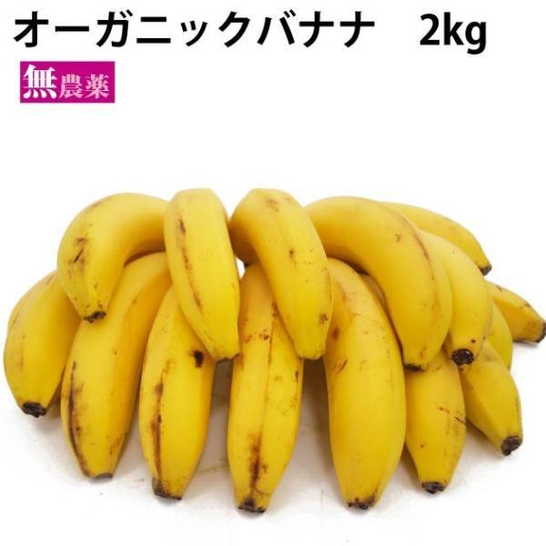 送料込 有機 オーガニック バナナ 2kg 中南米産