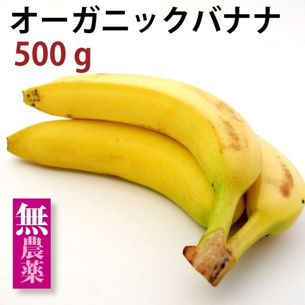 有機 バナナ500g 燻蒸処理をしていない安全な オーガニック バナナ500g 中南米産 送料別 ポイント消化 食品