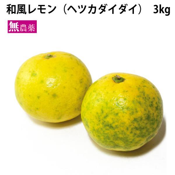 絞る柑橘 和風レモン(ヘツカダイダイ)3kg 鹿児島県産無農薬  送料込