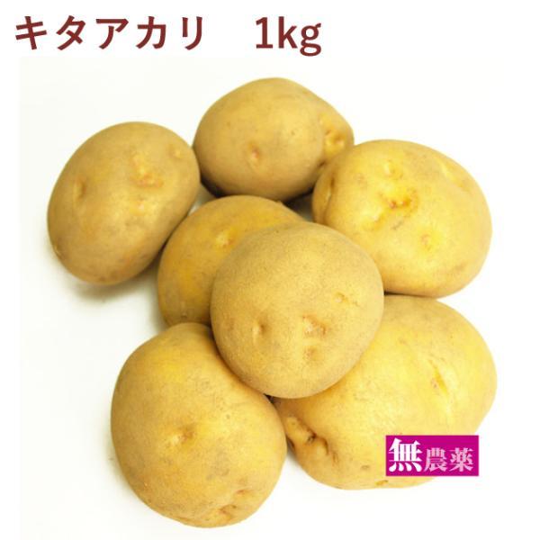 じゃがいも ジャガイモ   キタアカリ 1kg 無農薬栽培  送料別 ポイント消化 食品