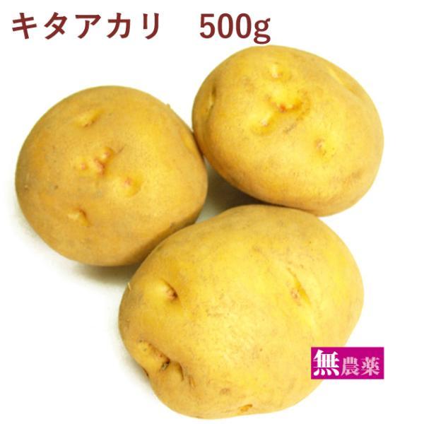 じゃがいも ジャガイモ   キタアカリ 500g 無農薬栽培  送料別 ポイント消化 食品