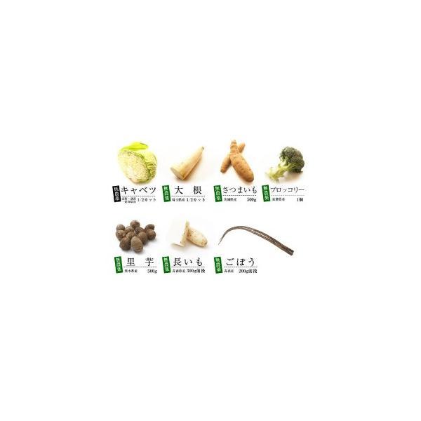 無農薬 低農薬 7品目野菜セット 少人数 お試し向け 送料無料|vegetable-heart|03