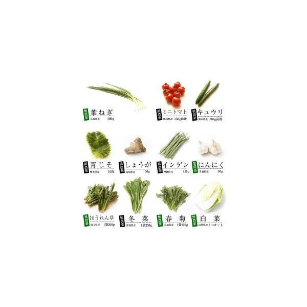 無農薬 低農薬 7品目野菜セット 少人数 お試し向け 送料無料|vegetable-heart|04