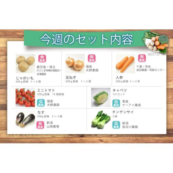 無農薬 低農薬 7品目野菜セット 少人数 お試し向け 送料無料|vegetable-heart|05