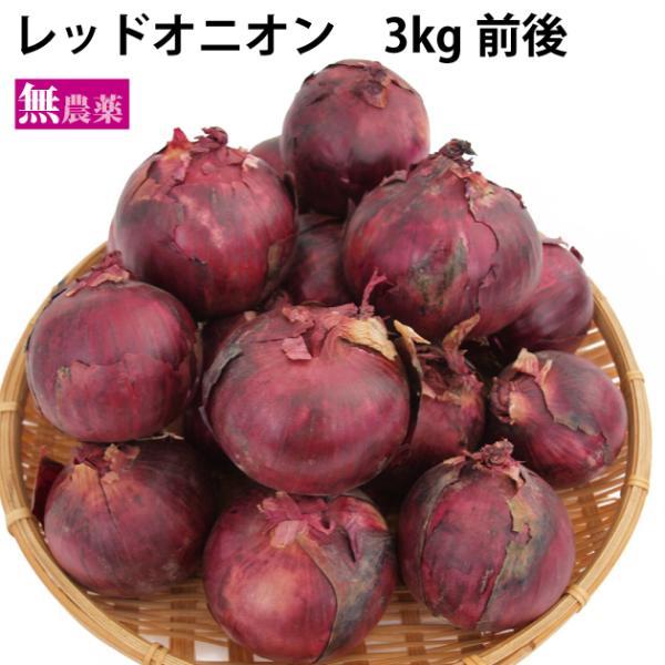 レッドオニオン 無農薬栽培 3kg 送料込