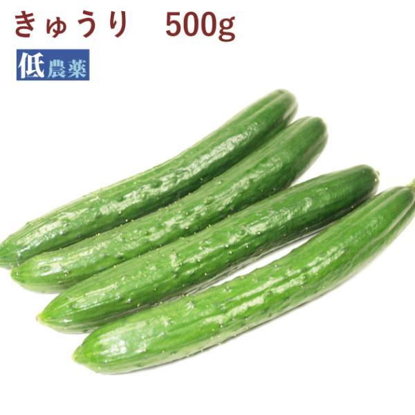 きゅうり500g 低農薬栽培  送料別 ポイント消化 食品