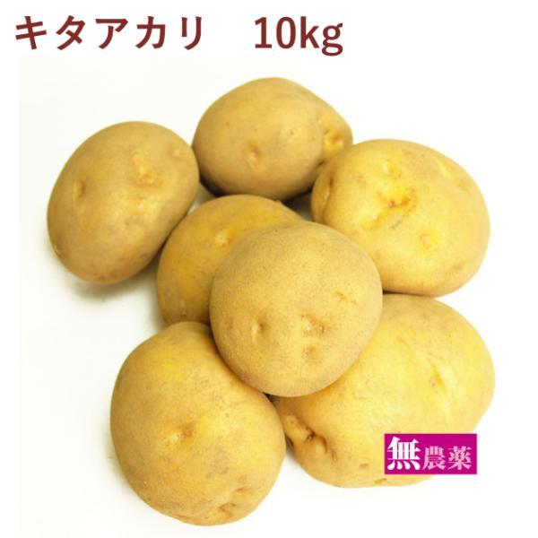 じゃがいも ジャガイモ キタアカリ 10kg 無農薬栽培 送料込