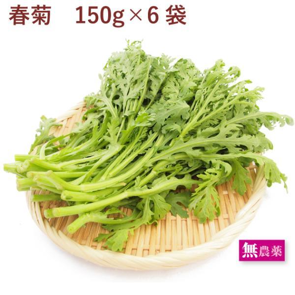 ベジタブルハート 春菊 無農薬栽培 6把 送料無料
