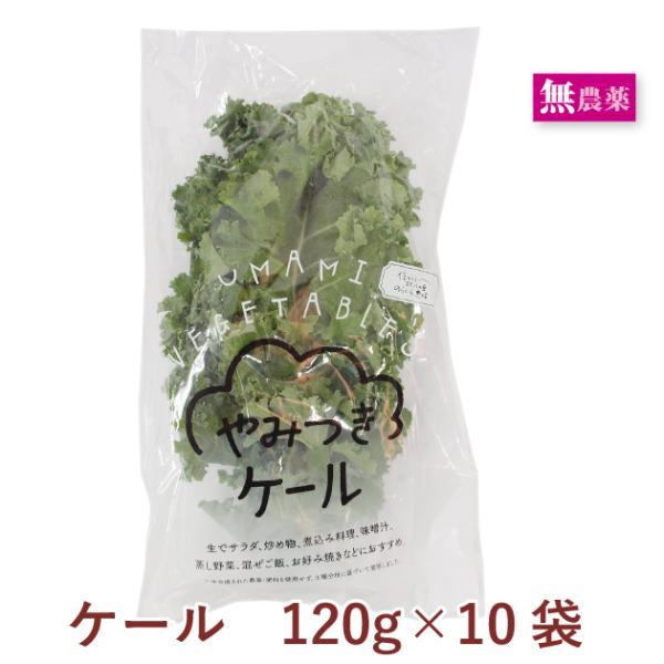 送料込 国産 イタリア野菜 ケール(緑または紫)  120g 10袋 無農薬