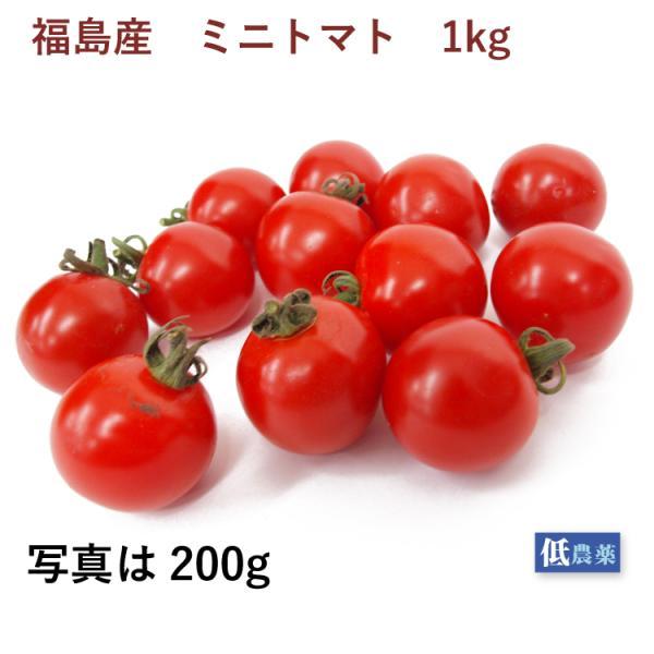 ミニトマト 1kg 福島県産 低農薬栽培  送料込