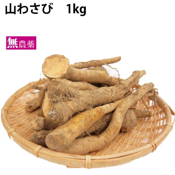 山わさび 無農薬栽培 1kg 送料込