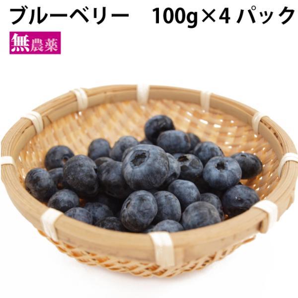 ブルーベリー 無農薬栽培 100g×4パック 送料込
