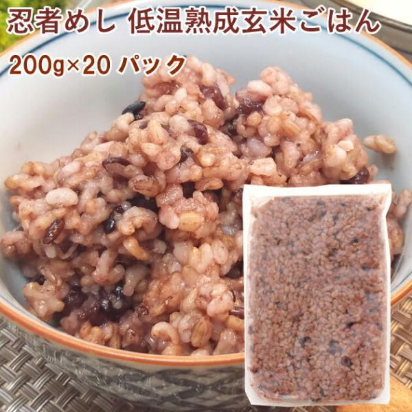 ファーム山本 忍者めし 低温熟成玄米ごはん 200g 20パック 送料無料