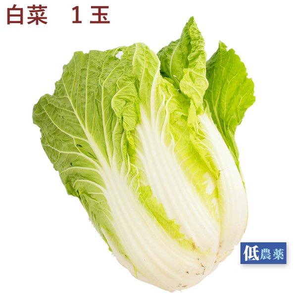 白菜 1玉 低農薬栽培 送料別 ポイント消化 食品