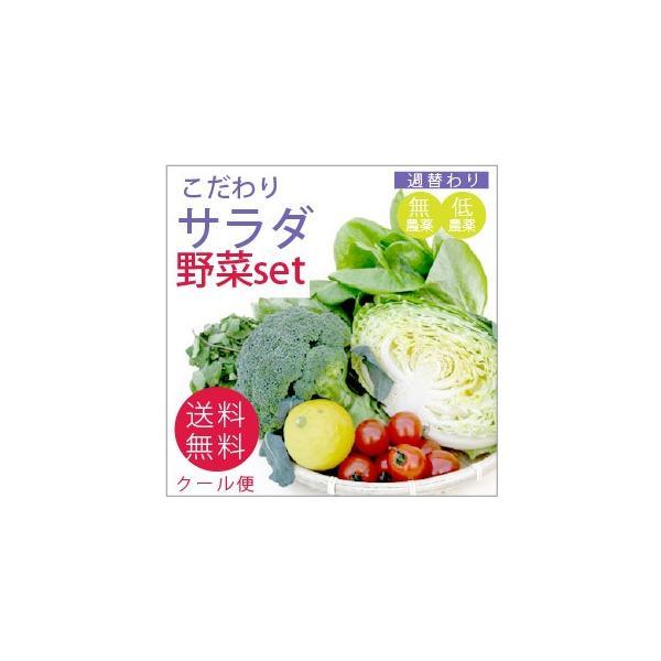 野菜 野菜セット 無農薬 低農薬 こだわり サラダ野菜セット 送料無料|vegetable-heart