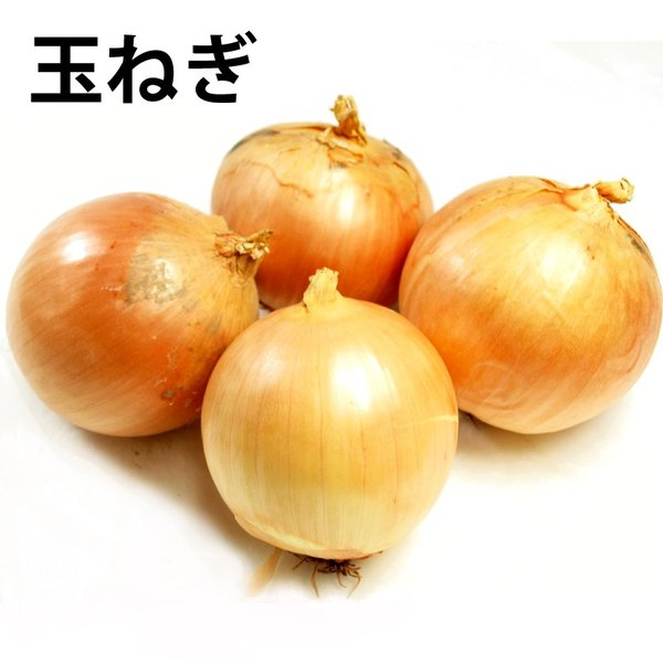 玉ねぎ 1kg 無農薬栽培 国産 野菜 送料別