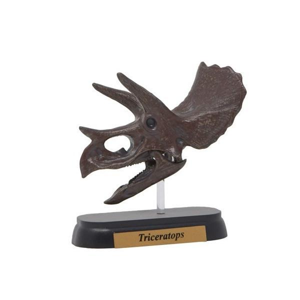 フィギュアダイナソーミニモデルトリケラトプススカルシリーズフェバリット恐竜頭骨フィギュア