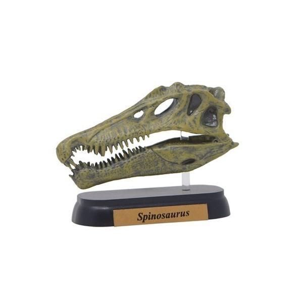フィギュアダイナソーミニモデルスピノサウルススカルシリーズ恐竜フェバリット頭骨フィギュアインテリア