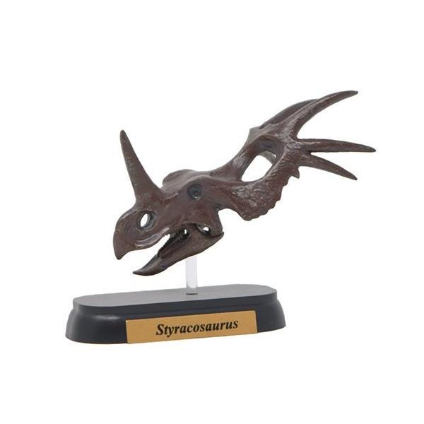 フィギュアダイナソーミニモデルスティラコサウルススカルシリーズフェバリット恐竜頭骨フィギュアインテリアギフト雑貨