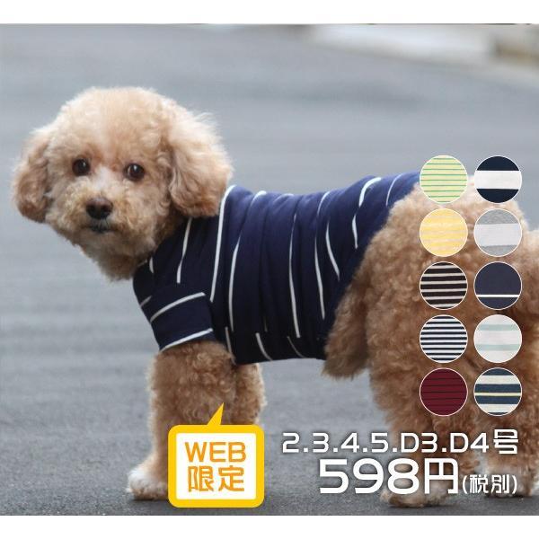 犬 服 VERY 小型犬 特価 WEB限定 ボーダーTシャツ 2号・3号・4号・5号・D3号・D4号 在庫限り ドッグウェア|very-pet