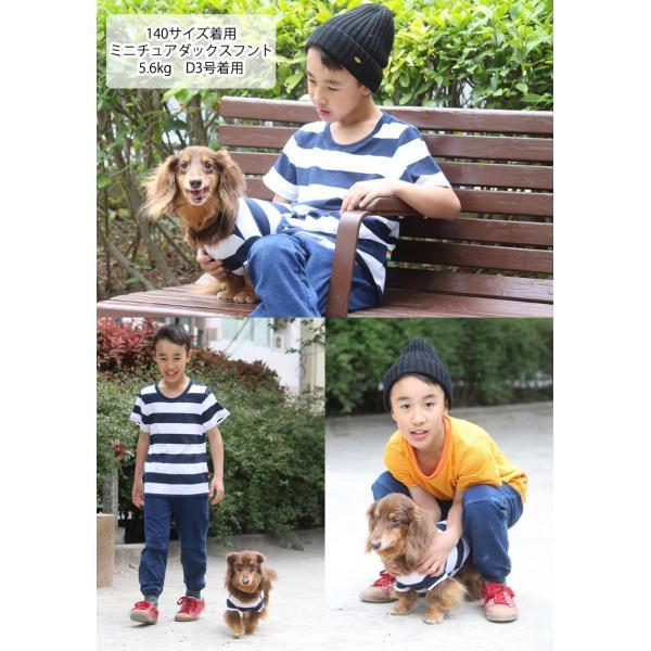 犬 服 VERY 小型犬 特価 WEB限定 ボーダーTシャツ 2号・3号・4号・5号・D3号・D4号 在庫限り ドッグウェア|very-pet|05