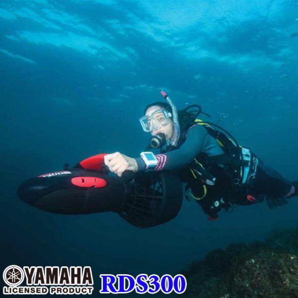 YAMAHA SEASCOOTER RDS300 ヤマハ シースクータ...