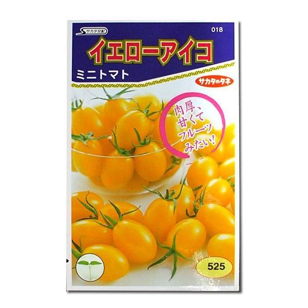 野菜の種/種子 イエローアイコ・ミニトマト 13粒(メール便発送)サカタのタネ 種苗|vg-harada