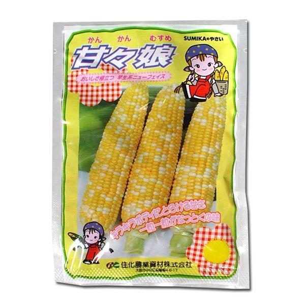 野菜の種/種子 甘々娘・とうもろこし・かんかんむすめ 約200粒 (メール便発送)|vg-harada