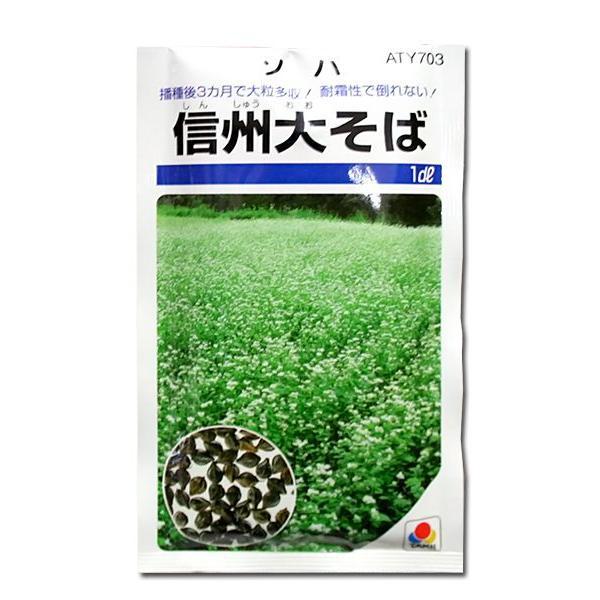 野菜の種/種子 信州大そば 1dl(メール便発送)タキイ種苗|vg-harada
