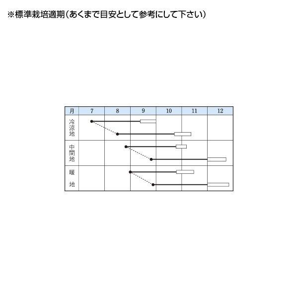 野菜の種/種子 白秋・だいこん・しか 20ml(メール便発送)タキイ種苗|vg-harada|02