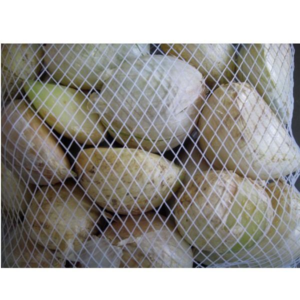 野菜・種/苗 無臭にんにく種子  250g|vg-harada|02