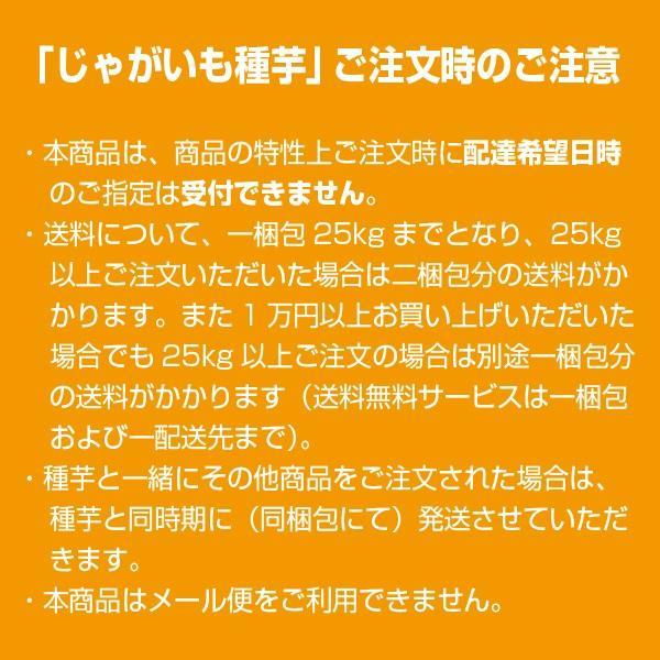 野菜・種/苗[春ジャガイモ種芋]アンデス じゃがいも種芋・生もの種 量り売り1kg|vg-harada|02