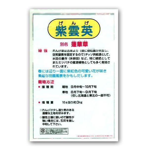 今年も大特価!れんげ・レンゲ草・蓮華草 花の種 種子 1kg|vg-harada|02