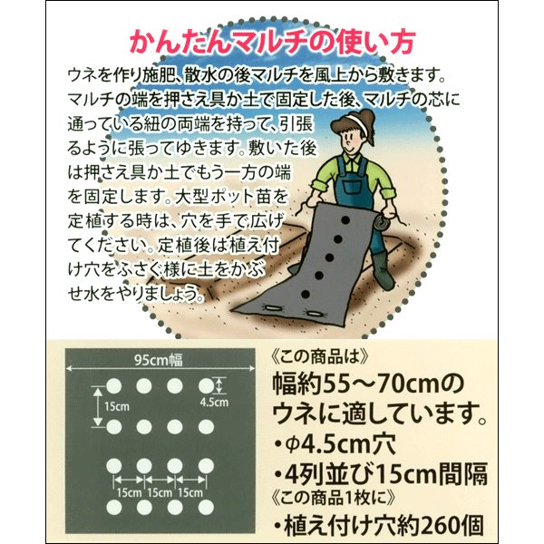 かんたん タマネギ マルチ 10m(幅95cm/薄さ0.03mm/穴径4.5cm×4列) 農業資材|vg-harada|02