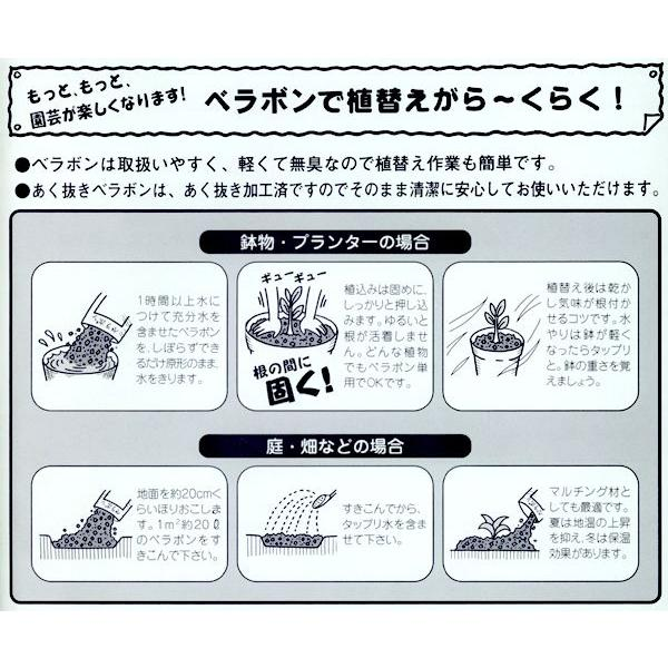 ヤシの実チップ あく抜きベラボン 4リットル(L粒/約14ミリ角) 園芸用品|vg-harada|02