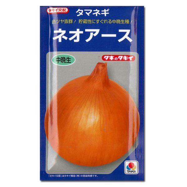 野菜の苗 中晩生 ネオアース・タマネギ 玉葱 玉ねぎ  100本入 vg-harada 02